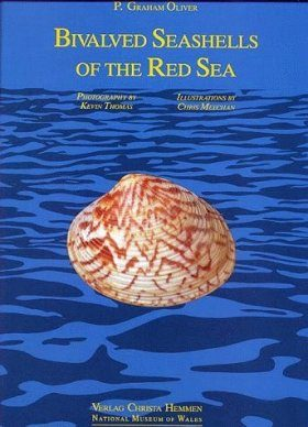 Bivalved Seashells of the Red Sea