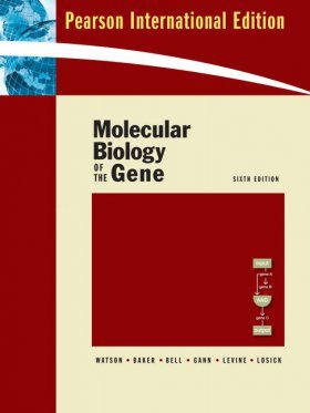 Molecular Biology of the Gene (International Edition)