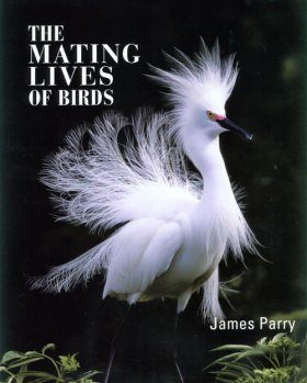 The Mating Lives of Birds