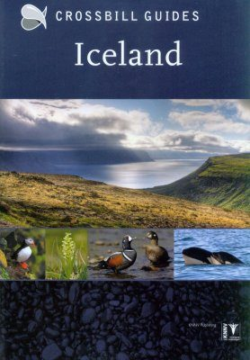 Crossbill Guide: Iceland