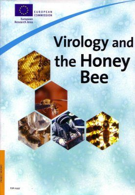 Virology and the Honey Bee