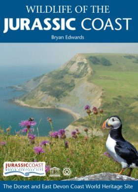 Wildlife of the Jurassic Coast