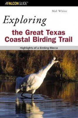Exploring the Great Texas Coastal Birding Trail