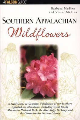Southern Appalachian Wildflowers