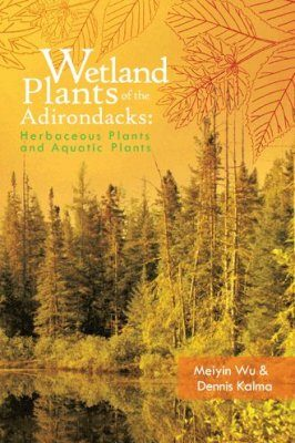 Wetland Plants of the Adirondacks, Volume 1