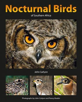 Nocturnal Birds of Southern Africa