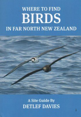 Where to Find Birds in Far North New Zealand