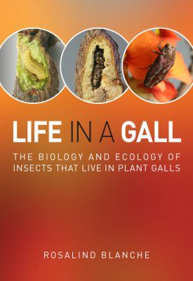 Life in a Gall