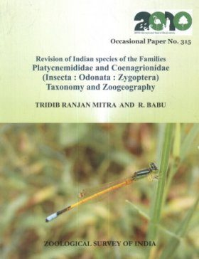 Revision of Indian Species of the Families Platycnemididae and Coenagrionidae (Insecta: Odonata: Zygoptera)