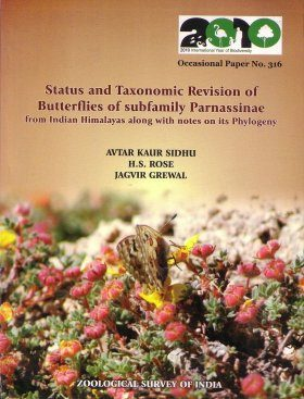 Status and Taxonomic Revision of Butterflies of Subfamily Parnassinae from Indian Himalayas Along With Notes on its Phylogeny