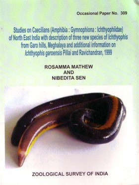 Studies on Caecilians (Amphibia: Gymnophiona: Ichthyophiidae) of North East India with Description of Three New Species of Ichthyophis from Garo Hills, Meghalaya, and Additional Information on
