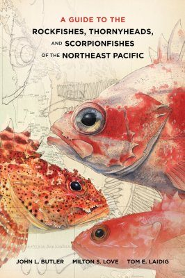 A Guide to the Rockfishes, Thornyheads, and Scorpionfishes of the Northeast Pacific