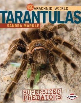 Tarantulas: Supersized Predators