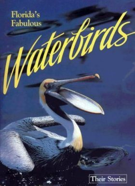 Florida's Fabulous Waterbirds