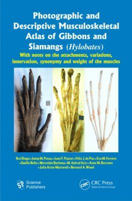 Photographic and Descriptive Musculoskeletal Atlas of Gibbons and Siamangs (Hylobates)