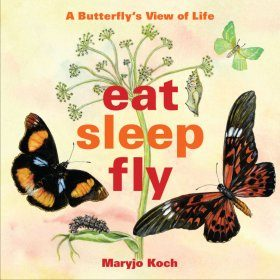 Eat, Sleep, Fly