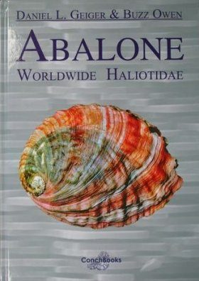 Abalone: Worldwide Haliotidae