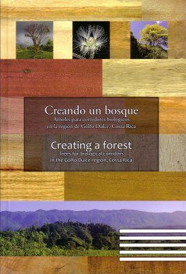 Creating a Forest / Creando un Bosque