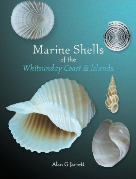Marine Shells of the Whitsunday Coast and Islands