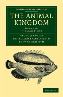 The Animal Kingdom, Volume 10