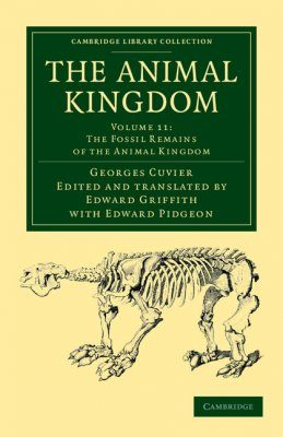 The Animal Kingdom, Volume 11