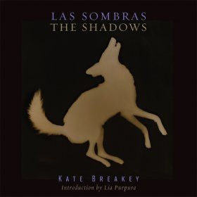 The Shadows / Las Sombras