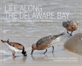 Life Along the Delaware Bay
