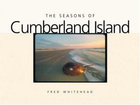 The Seasons of Cumberland Island