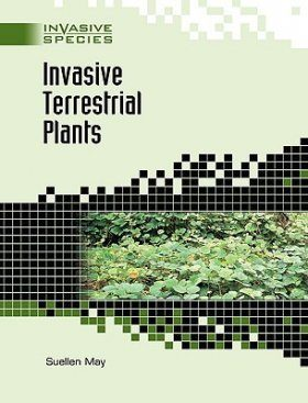 Invasive Terrestrial Plants