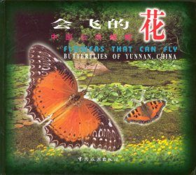 Butterflies of Yunnan, China