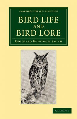 Bird Life and Bird Lore