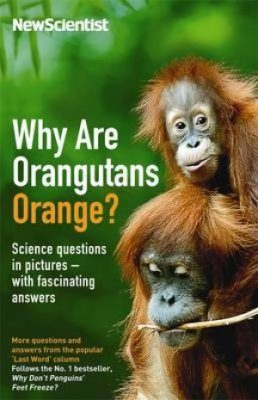 Why are Orangutans Orange?