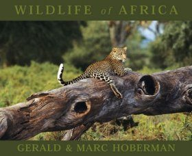 Wildlife of Africa (Mini Edition)