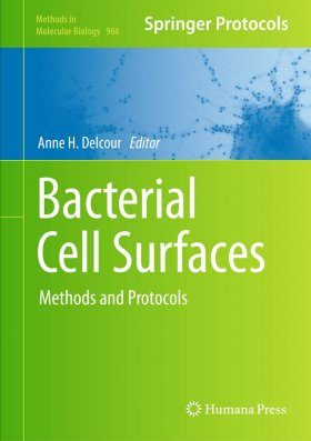Bacterial Cell Surfaces