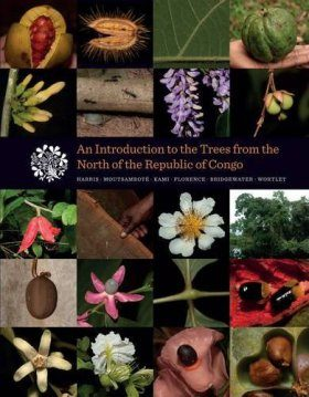 An Introduction to the Trees from the North of the Republic of Congo