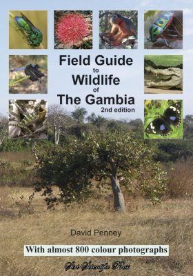 Field Guide to Wildlife of The Gambia