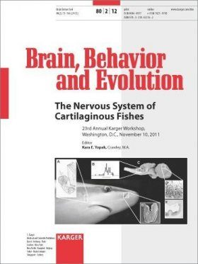 The Nervous System of Cartilaginous Fishes