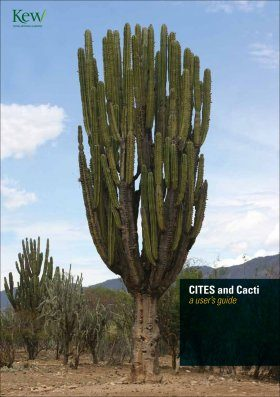 CITES and Cacti
