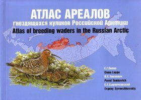 Atlas of Breeding Waders in the Russian Arctic [Russian]