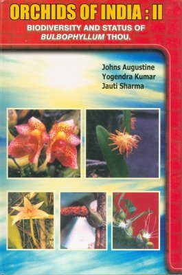 Orchids of India, Volume 2