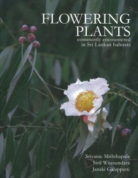 Flowering Plants Commonly Encountered in Sri Lankan Habitats