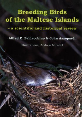 Breeding Birds of the Maltese Islands