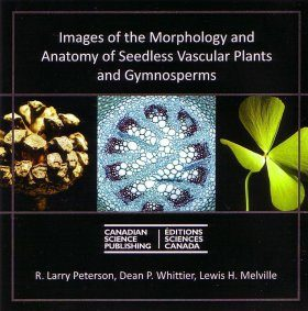 Images of the Morphology and Anatomy of Seedless Vascular Plants and Gymnosperms