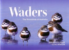 Waders: The Shorebirds of Australia