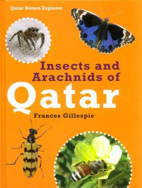 Insects and Arachnids of Qatar