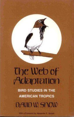 The Web of Adaptation
