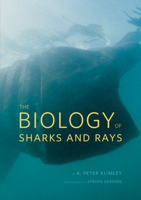 The Biology of Sharks and Rays