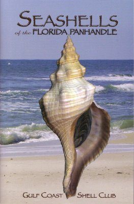 Seashells of the Florida Panhandle
