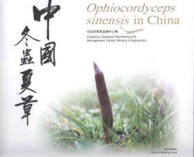 Ophiocordyceps sinensis in China
