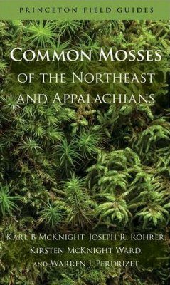 Common Mosses of the Northeast and Appalachians
